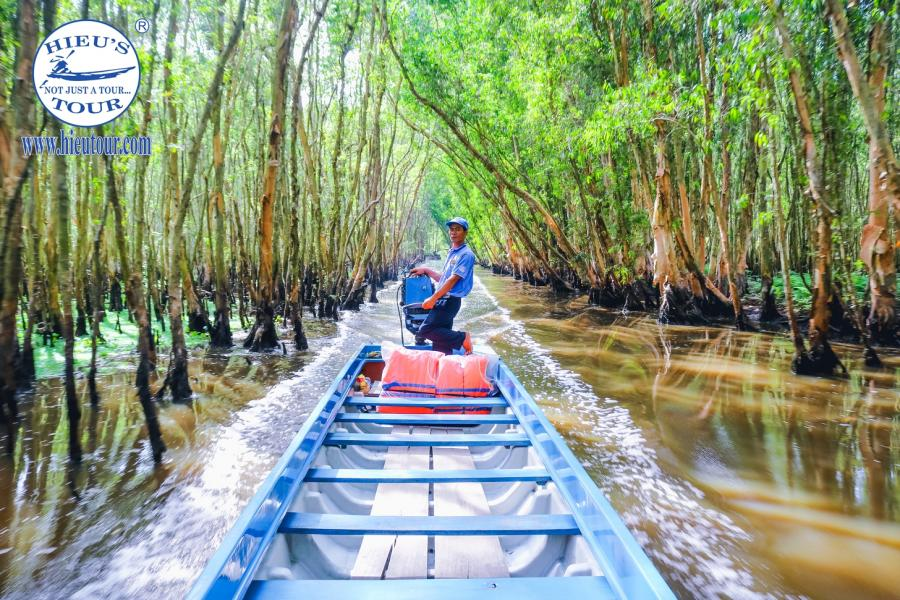 1 DAY CAN THO - AUTHENTIC FLOATING MARKET - TRA SU FOREST.HIB1DTS1 color
