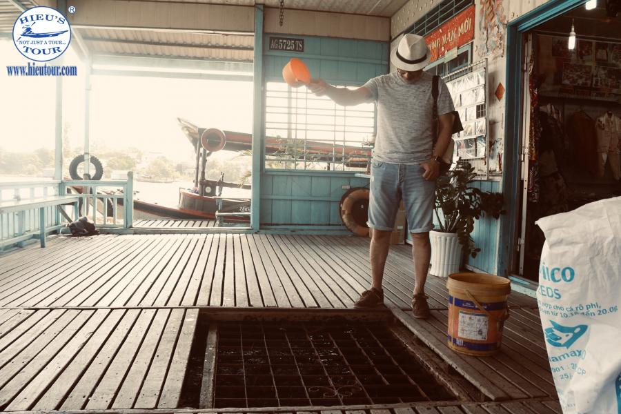 2 DAYS 1 NIGHT CAN THO CHAU DOC INSIGHTS color