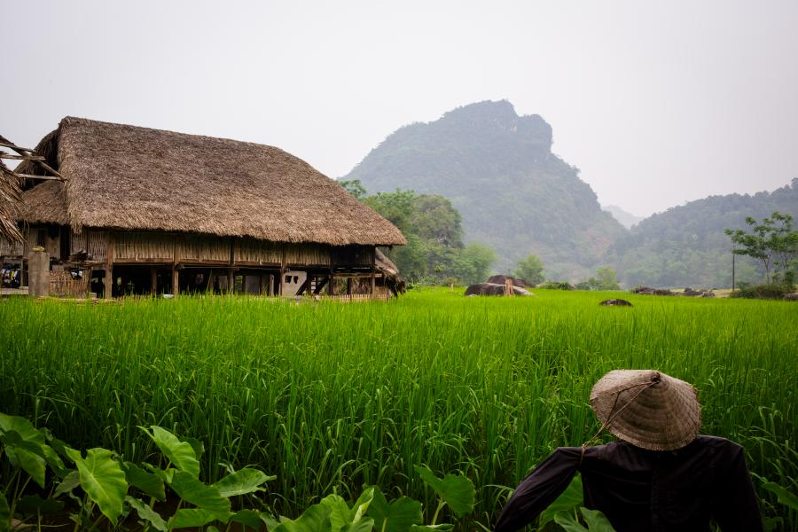 HA NOI -6-DAY DISCOVERY PLACES IN NORTH  color